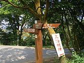 大棟山青龍嶺大同山:IMGP0693.JPG