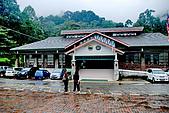 2009/12/21 馬來西亞-神山波令温泉-樹頂吊橋 :DSC_8539.jpg
