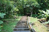 圓山水神社:DSC_1812.JPG