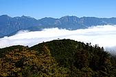 南湖大山5/14:DSC_1009.JPG