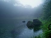 陽明山三池-向天池,七星池,夢幻湖:IMGP1952.JPG
