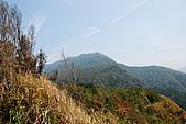 泰安橫龍山橫龍古道:DSC_5684加里山.jpg