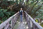 炎夏水管路半嶺水圳清涼行:DSC_2479.JPG