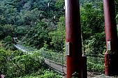 2010/01/10錐麓古道  斷崖駐在所—錐麓斷崖—巴達岡:DSC_9764.jpg