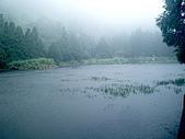 陽明山三池-向天池,七星池,夢幻湖:IMGP1973.jpg