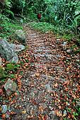 2010/01/10錐麓古道  斷崖駐在所—錐麓斷崖—巴達岡:DSC_9809.jpg