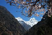 尼泊爾-聖母峰基地營(EBC)3/18-3/20:DSC_0156.jpg