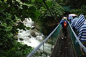 2009/12/21 馬來西亞-神山波令温泉-樹頂吊橋 :DSC_8548.JPG