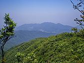 阿玉山:IMGP0603.jpg