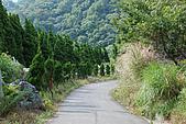 炎夏水管路半嶺水圳清涼行:DSC_2482.JPG
