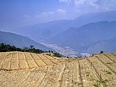 南山神木、米羅山:IMGP2181.jpg