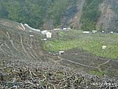 百年百岳─志佳陽大山:P1080353.jpg