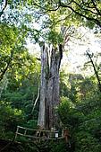 北得拉曼 內鳥嘴山:DSC_4715.jpg