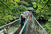 2009/12/21 馬來西亞-神山波令温泉-樹頂吊橋 :DSC_8551.jpg