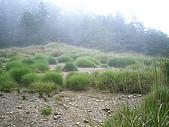 2009/7/4 桃山:IMGP1373.jpg
