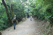 炎夏水管路半嶺水圳清涼行:DSC_2262.JPG