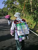 草嶺古道桃源谷:IMGP1856.jpg