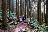 加里山:DSC_5846.jpg