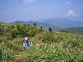 阿玉山:IMGP0615.jpg