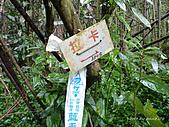 滿月圓檜谷線上多崖山:P1080810.JPG