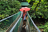 2009/12/21 馬來西亞-神山波令温泉-樹頂吊橋 :DSC_8553.jpg
