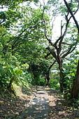 圓山水神社:DSC_1814.jpg