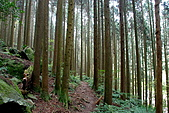 加里山:DSC_5848.jpg