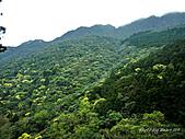 滿月圓檜谷線上多崖山:P1090009.jpg