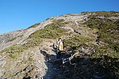 南湖大山5/13:DSC_0624.JPG