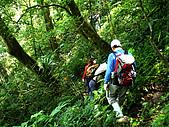 南山神木、米羅山:IMGP2194.jpg