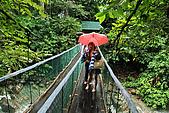 2009/12/21 馬來西亞-神山波令温泉-樹頂吊橋 :DSC_8554.jpg