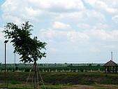 越南西寧:DSCN3417