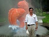 越南西寧:DSCN3425