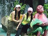 越南風情:DSCN4580