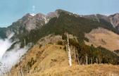 台灣百岳全集(老相片1973→2002):雪山