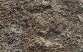 菜公坑山:菜公坑山/磁鐵礦