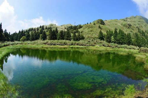 夢幻湖內翠綠色的植物是臺灣水韭 - 陽明山遊園景點