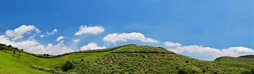 擎天崗北降山稜 - 陽明山遊園景點