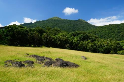 陽明山遊客中眺望七星山 - 陽明山遊園景點