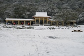 陽明山賞雪2016/01/24:七星公園雪景