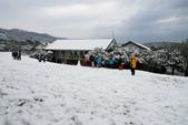 陽明山賞雪2016/01/24:陽管處