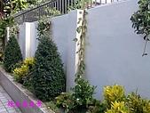 庭園造景園藝花卉規劃設計施工:花台造景.jpg