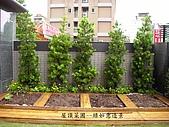 庭園造景園藝花卉規劃設計施工:露台菜圃.jpg