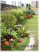 庭園造景園藝花卉規劃設計施工:屋頂花圃.jpg