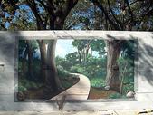 高雄市區的森林─中央公園:cp18.jpg