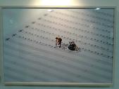 微型展─田中達也的奇幻世界:mle009.jpg
