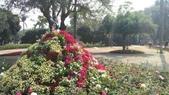 2014台南公園百花季:1391913293839.jpg