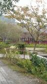 桃米之旅:IMAG0137.jpg