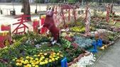 2014台南公園百花季:1391912941950.jpg