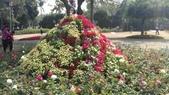 2014台南公園百花季:1391913285601.jpg